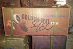 GOLDEN-NUT-BRAND